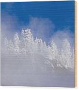Between Heaven And Earth Wood Print