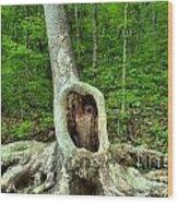 Big Mouth Wood Print