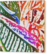 Bird of Paradise Painted Wood Print
