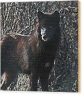 Black Wolf Wood Print