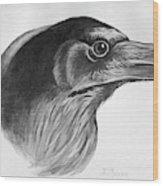 Blackburn Birds, 1895 Wood Print