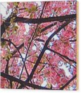 Blossoms And Bark Wood Print