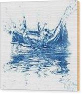 Blue Fresh Water  Wood Print
