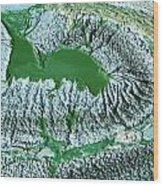 Blue-green Algae Wood Print