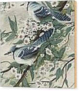 Blue Jays And Blossoms Wood Print