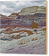 Blue Mesa Trail In Petrified Forest National Park-arizona Wood Print