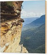 Blue Mountains Walkway Wood Print