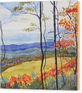 Blue Ridge Mountains Of West Virginia Wood Print