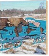 Blue Sleigh Wood Print