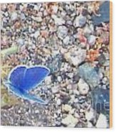 Blue Visions Wood Print