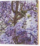 Blue Wisteria Wood Print
