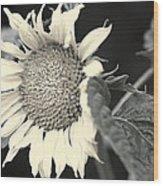 Blumen Wood Print