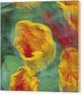Blurred Tulips Wood Print