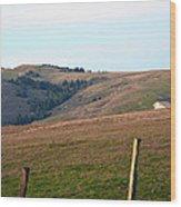 Bodega Hills Wood Print