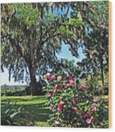 Bok Tower Gardens Wood Print