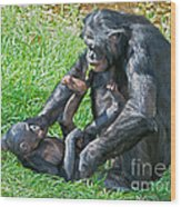 Bonobo Adult And Baby Wood Print
