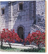 Bougainvillea And Stone Wall Wood Print
