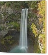 Brandywine Falls British Columbia Wood Print