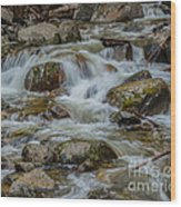 Bridalveil Creek Yosemite Wood Print