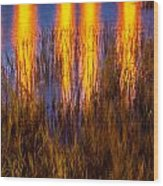 Bridge Of Lions Reflections St Augustine Florida Painted    Wood Print
