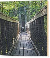 Bridge To Paradise Wood Print