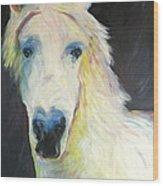 Bright Eyed Bailey Wood Print
