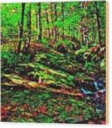 Brook Texture 16 Wood Print
