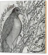 Brother Hawk Wood Print