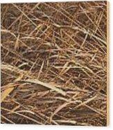 Brown Reeds Wood Print