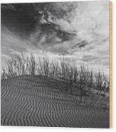 Bruneau Dunes State Park Idaho Wood Print