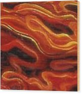 Brush Strokes In Red Wood Print