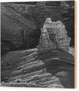 Bryce Canyon 15 Wood Print