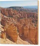 Bryce Canyon Hoodoos And Fins Wood Print