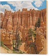 Bryce Hills 2 Wood Print
