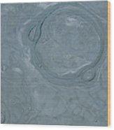 Bubble Trouble #2 Wood Print