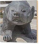 Badger Statue 4 At Uw Madison Wood Print