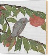 Bulbul And Persimmon  Wood Print