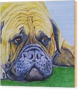 Bulldog Wood Print by Prashant Shah