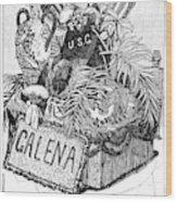 Burial Of Ulysses S Wood Print