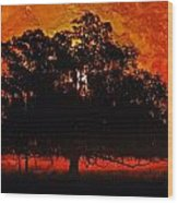 Burning Tree Wood Print