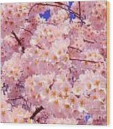 Bursting With Blossoms Wood Print