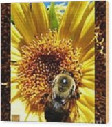 1 Busy Bumble L Wood Print