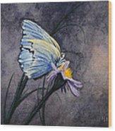 Butterfly Wood Print by Bob Hallmark