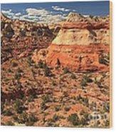 Calf Creek Canyon Red Rocks Wood Print
