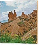 Camel In Camel Valley In Cappadocia-turkey Wood Print