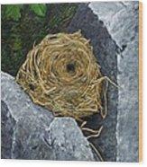 Campagnol Nest Wood Print