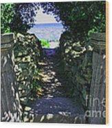 Cana Island Walkway Wi Wood Print