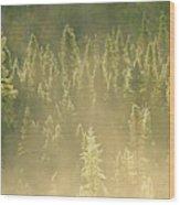 Canada, Ontario, Worthington Wood Print