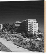 Cap De Salou Waterfront Properties On The Costa Dorada Catalonia Spain Wood Print