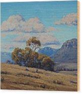 Capertee Valley Australia Wood Print